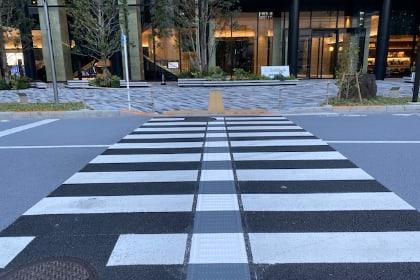 エスコートゾーン(横断歩道点字ライン)
